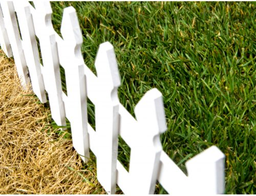 Quando a grama do vizinho é sempre a mais verde