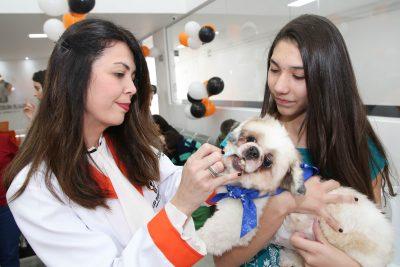 Dra Carolina vermifulgando o primeiro cachorrinho(Luke e tutora Ana Julia Godoy)