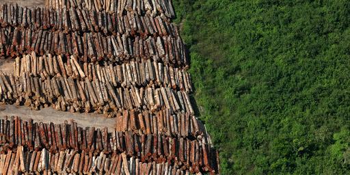 Mistério: Oito cidades de São Paulo sumiram em 2019
